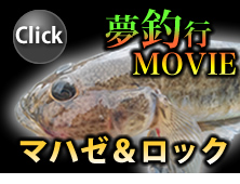 BS日テレ「夢釣行~一魚一会の旅~」マハゼ&ロック
